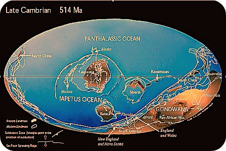 Late Cambrian Map