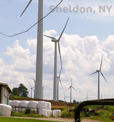 by Sheldon, NY, Townsheldon town